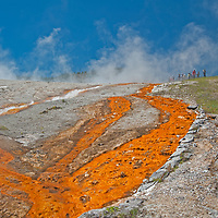Tourists explore steaming hot springs at Midway Geyser Basin in Wyoming's Yellowstone National Park.