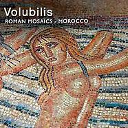 Volubilis Roman Mosaics Antiquities - Morocco - Pictures Photos Images