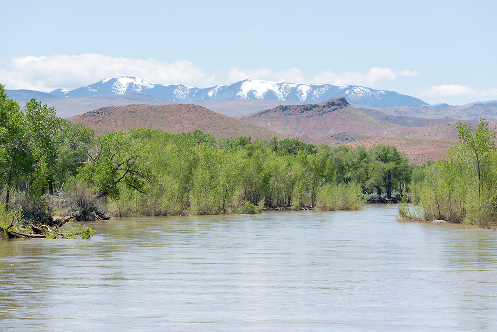 Carson River at high water with the Sierra Range in the background, Nevada.