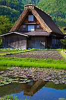 68. Gassho-zukuri 合掌造 at Shirakawa-go are houses are a type of minka built of wooden beams assembled to form a steep thatched roof that resembles two hands praying together. These structures were built to suit the winter environment in Shirakawa and also provide work space for the area's sericulture.  The buildings face north and south so as to minimize wind resistance while controlling the amount of sunlight hitting the roof which keep them cool in summer and warm in the winter.  Because of its remote location and harsh winters, this special kind of roof with extreme angles were developed to cope with the deep and heavy snows in winter.