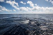 North Atlantic Ocean, September 2014. <br /> Manta trawl. © Chiara Marina Grioni