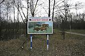 Chernobyl landscape
