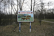 Chernobyl Exclusion Zone, Belarus. Rangers looking after Ecological reserve,.Evacuated region designated as high risk for contamination of nuclear radiation. Homes are left derelict. The region has  become a natural wildlife reserve. It is controled by rangers, otherwise it is uninhabited. One of biggest dangers is a forest fire which could move large quantities of radioactivity by airborn means to areas otherwise unaffected.