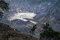 Indonesia, Java, Parompong. Tangkuban Prahu volcano. Kawah Ratu, the largest crater.