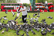 An elderly man feeding lentils from a plastic carrier bag to the pigeons on the green at Marble Arch,  Central London. United Kingdom.