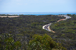 The peloton approach the climb on Bells Beach at Deakin University Elite Women Cadel Evans Road Race 2019, a 113 km road race starting and finishing in Geelong, Australia on January 26, 2019. Photo by Sean Robinson/velofocus.com
