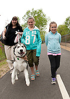 Thor a 5 month old Alaskan Malamute led the charge as Lynnette LeBlanc and her two daughters Sabrina and Sophie joined in the BOW WOW Fest 2011 presented by the Wow Trail and the NH Humane Society on Saturday morning.   (Karen Bobotas/for the Laconia Daily Sun)