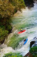 Kayaking, Kaituna RIver, near Rotorua, north island, New Zealand