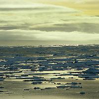 Floe ice near Franz Josef Land, Russia.