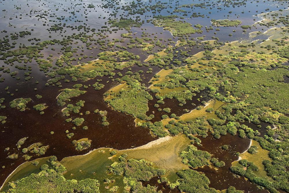 Wetland Shell Beach<br /> North GUYANA<br /> South America