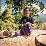 A woman sits on top of the pile of rice husks she's sorting and letting dry in the sun in a village in the rugged terrain of northern Laos.