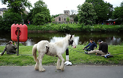 © Licensed to London News Pictures. <br /> 05/06/2014. <br /> <br /> Appleby, Cumbria, England<br /> <br /> A horse is tied next to the river bank as gypsies and travellers gather during the annual horse fair on 5 June, 2014 in Appleby, Cumbria. The event remains one of the largest and oldest events in Europe and gives the opportunity for travelling communities to meet friends, celebrate their music, folklore and to buy and sell horses.<br /> <br /> The event has existed under the protection of a charter granted by King James II in 1685 and it remains the most important event in the gypsy and traveller calendar.<br /> <br /> Photo credit : Ian Forsyth/LNP