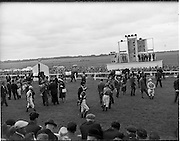 """30/06/1962 <br /> 06/30/1962<br /> 30 June 1962<br /> Irish Sweeps Derby at the Curragh Racecourse, Co. Kildare. General view of the  parade in front of the reserved enclosure for the Derby. The horses were shown and mounted on the course. Charles Haughey in front of """"Snowhound"""". Image shows the horses """"Snowhound"""" and """"Running Rock""""."""