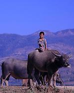 Facets of Myanmar - Earth