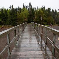 North America, Canada, Nova Scotia, Guysborough. Boylston Provinicial Park trail.