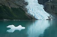 Iceberg on Berg Lake, Mount Robson Provincial Park British Columbia