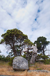 Boulder and Tree, Gossip Island, San Juan Islands, Washington, US