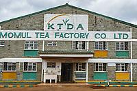 Kenya, Kericho county, Kericho, usine de thé Momul du Kenya Tea Development Agency (KTDA) // Kenya, Kericho county, Kericho, Momul tea factory of Kenya Tea Development Agency (KTDA)