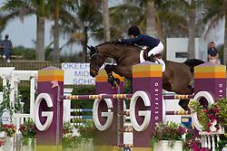 Springsteen Jessica (USA) - Vornado van den Hoendrik<br /> Horseware GP CSI 2*<br /> Wellington 2012<br /> © Hippo Foto - Cealy Tetly