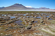 Snow capped volcanoes and moss deposits. Salar Uyuni salt flats and Eduardo Avaroa national park, south western Bolivia
