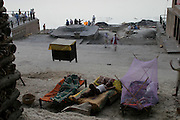 People sleep near the piles of wood for cremation fires on the banks of the Ganges River near the Harishchandra Ghat (also known as the Harish Chandra Ghat) which is the smaller and more ancient of the two primary cremation grounds in Varanasi.