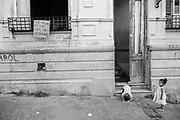 Barrio Sur, Montevideo, Uruguay. Febraury/2016.