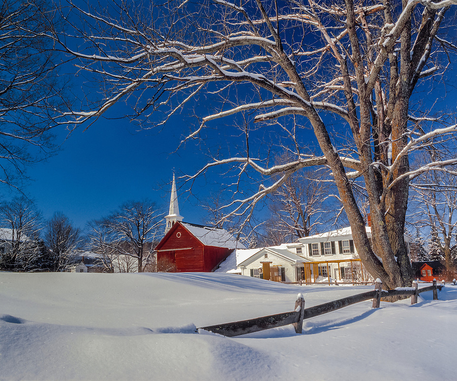 Winters day, home, barn, and church steeple with snow covered Ash tree, Peacham, VT