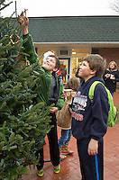 Davis Jollimore and Quinn Taylor place homemade ornaments on a Christmas tree in Meredith Park Saturday afternoon as part of the Greater Meredith program.  (Karen Bobotas/for the Laconia Daily Sun)