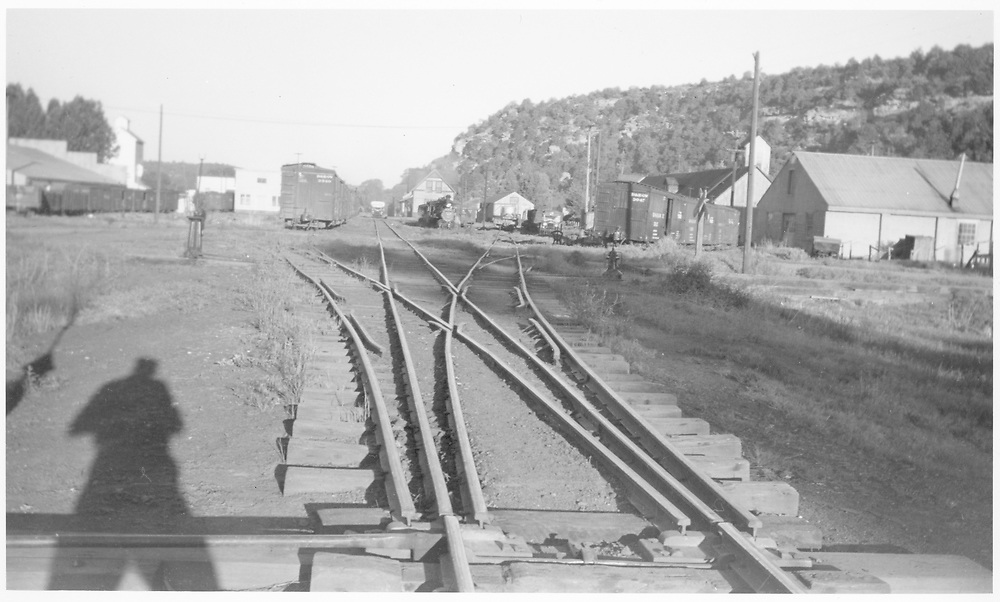 View of Dolores from the west with view of 3-way stub switch.  RGS locomotive #319 and Goose in distance.<br /> RGS  Dolores, CO  Taken by Peyton, Ernie S.<br /> See RD143-017 and RD143-021.  Both are by Ernie Peyton in June 1946.  This photo likely dates to that time.  Note shadows to left by boxcars.  This info from SR in 12/2012.