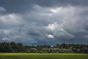 Short interruption with bright sunlight shines over grazed meadow just before or after summer rainstorm, near Teiči Nature Reserve, Latvia Ⓒ Davis Ulands   davisulands.com