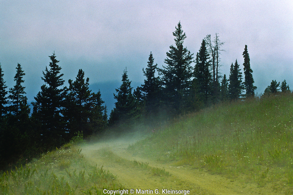 Steam forms when cold rain drops land on the hot ground, creating a light fog.  Front Range Mountains, Colorado.