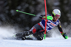 06.01.2014, Stelvio, Bormio, ITA, FIS Weltcup Ski Alpin, Bormio, Slalom, Herren, im Bild Ted Ligety // Ted Ligety  in action during mens Slalom of the Bormio FIS Ski World Cup at the Stelvio in Bormio, Italy on 2014/01/06. EXPA Pictures © 2014, PhotoCredit: EXPA/ Sammy Minkoff<br /> <br /> *****ATTENTION - OUT of GER*****
