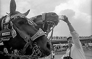 Stierstädter Kerb | 1992. Bilder für den Oberurseler  Kurier fotografiert in den Jahren von 1988-1994.