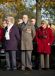 © Licensed to London News Pictures. 11/11/2012..Saltburn, Cleveland, England..The Remembrance Day parade and service takes place in the Cleveland seaside town of Saltburn by the Sea..A proud former serviceman looks on during the service...Photo credit : Ian Forsyth/LNP