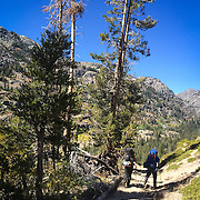 Hikers make their way threw Agnew Meadows and onto the Shadow Lake Trail in the Ansel Adams Wilderness where Fall colors were starting to pop.