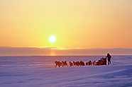 Steger Dogsled Expeditions