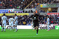 Football - 2012 / 2013 Premier League - Swansea vs. Norwich City_grant holt scores norwich's 3rd goal