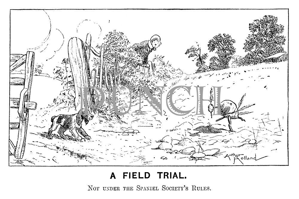A Field Trial. Not under the Spaniel Society's Rules.