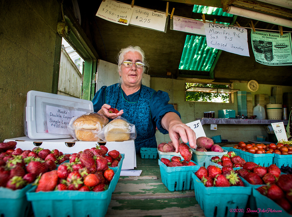Selling fruits, vegetables and flowers at Newswanger's Roadside Stand & Greenhouse on High Road. Scenes from the Fourth of July, 2020, in Maxatawney Township, Berks County, Pennsylvania.<br /> - Photography by Donna Fisher<br /> - ©2020 - Donna Fisher Photography, LLC                     <br /> - donnafisherphoto.com