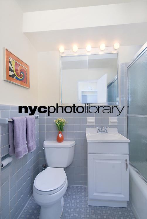 Bathroom at 310 East 70th Street