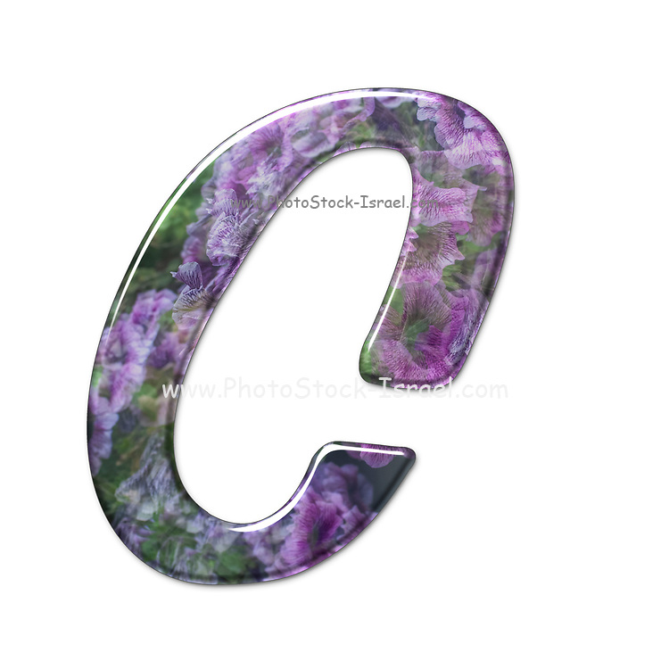 The Capitol Letter C Part of a set of letters, Numbers and symbols of 3D Alphabet made with a floral image on white background