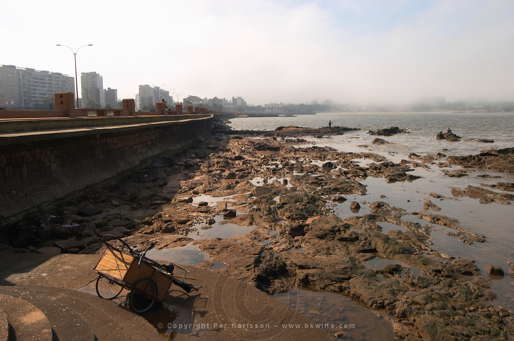 The city skyline in mist rocks in the foreground and men fishing from the rocks. A bicycle cart., on the riverside seaside walk along the river Rio de la Plata Ramblas Sur, Gran Bretagna and Republica Argentina Montevideo, Uruguay, South America