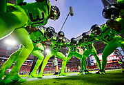 during an NFL football game between the Arizona Cardinals and the Seattle Seahawks, Thursday, Nov. 9, 2017, in Glendale, Ariz. The Seahawks defeated the Cardinals, 22-16. (Ryan Kang via AP)