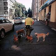 Zizkov#2. #prag #praha #prague #czechrepublic #street #dogs #dog #style #public #animal