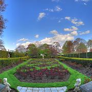 Rose beds at Fuller Garden in Spring before blooming