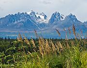See the sharp peak of Grand Tokosha from Denali State Park, Alaska, USA.