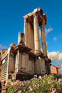 Temple of Vesta, The Forum Rome .<br /> <br /> Visit our ITALY HISTORIC PLACES PHOTO COLLECTION for more   photos of Italy to download or buy as prints https://funkystock.photoshelter.com/gallery-collection/2b-Pictures-Images-of-Italy-Photos-of-Italian-Historic-Landmark-Sites/C0000qxA2zGFjd_k<br /> .<br /> <br /> Visit our ROMAN ART & HISTORIC SITES PHOTO COLLECTIONS for more photos to download or buy as wall art prints https://funkystock.photoshelter.com/gallery-collection/The-Romans-Art-Artefacts-Antiquities-Historic-Sites-Pictures-Images/C0000r2uLJJo9_s0