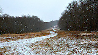 Long Winding Road. Winter Snowstorm at the Sourland Mountain Preserve. Nikon D300 18-200 mm f/3.5-5.6 VR lens (ISO 400, 26 mm, f/5.6, 1/800 sec).