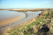 Barthrop's Creek at low tide, an inlet and tributary of the River Ore, near Shingle Street, Suffolk