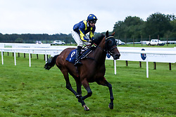 Rare Glam ridden by Charles Bishop trained by Joseph Tuite wins the Best Free Tips At valuerater.co.uk Classified Stakes (Div II) - Mandatory by-line: Robbie Stephenson/JMP - 19/08/2020 - HORSE RACING - Bath Racecourse - Bath, England - Bath Races